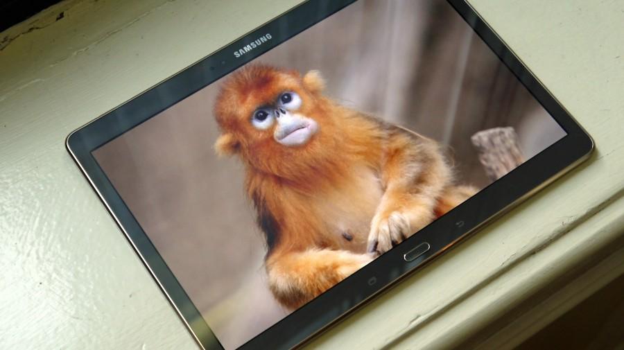 Экран Samsung Galaxy Tab S